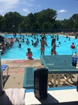 Bellevue Public Swimming Pools to Open on Tuesday, May 31st