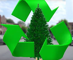Christmas Tree Recycling Available Through January 9th at Bellevue's Tree Dump